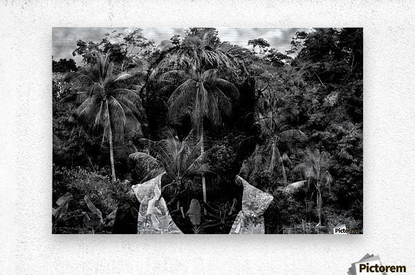 Guyana Child of the jungle   Metal print