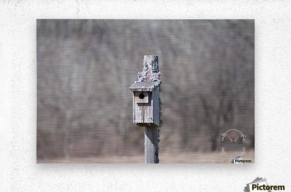 Abandoned Birdhouse   Metal print