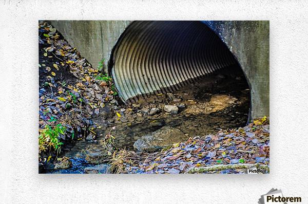 Secret Tunnel  Metal print