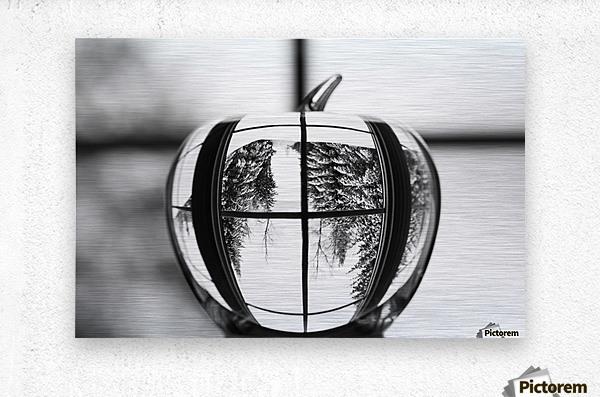 L'hiver est dans la pomme  Metal print
