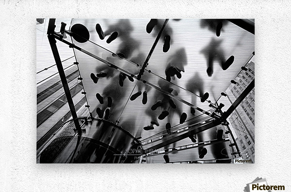 Apple Store  Metal print