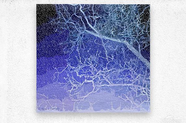 TreeBranches2  Metal print