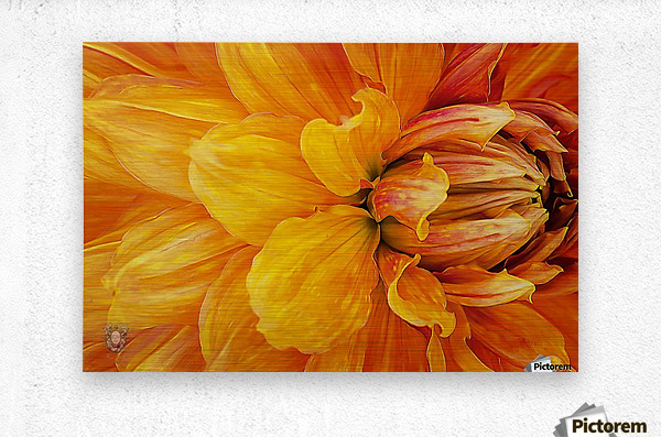 From My Garden With Love 04  Metal print