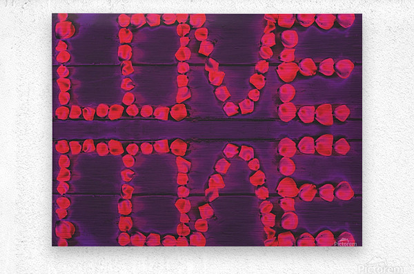 LOVE with pink rose on the purple wood background  Metal print