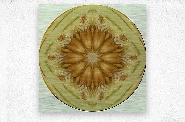 melon 1  Metal print