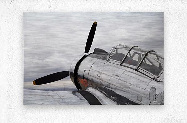 P-53 Nose  Metal print