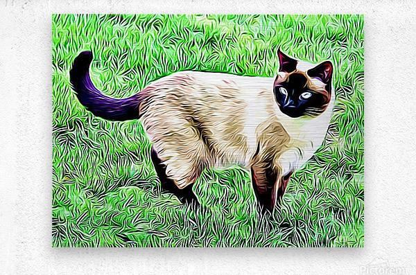 CAT3  Metal print