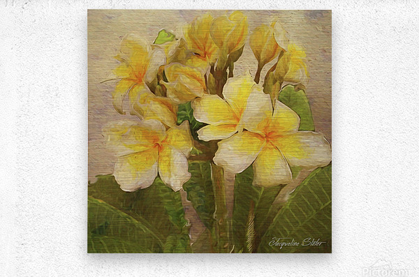 Floridian Bouquet  Metal print