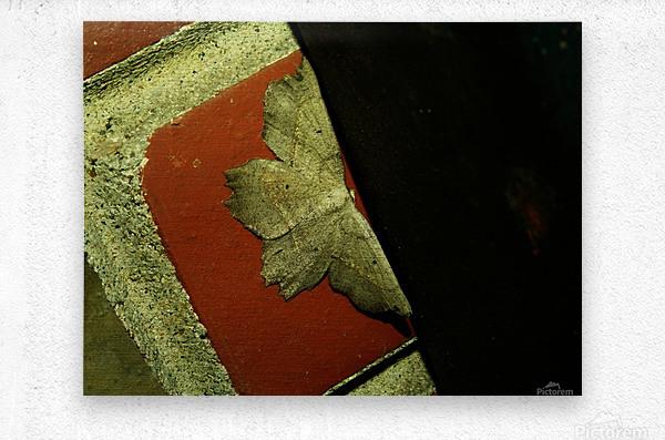 sofn-4D749FB8  Metal print
