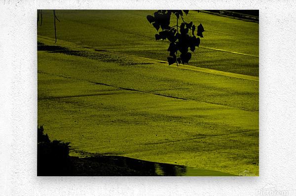 sofn-330900A2  Metal print