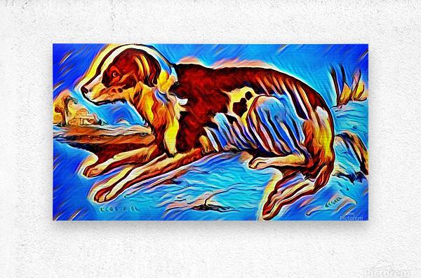 Dog_Splash_OSG  Metal print