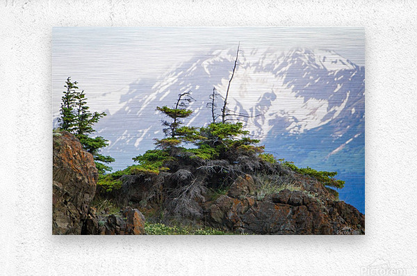 Alaska Scenery Pictures - Cliffs and Mountains  Impression metal