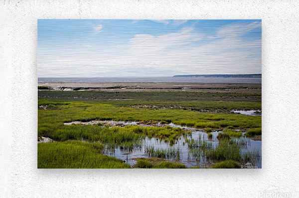 Alaska Scenery - Bay View  Metal print