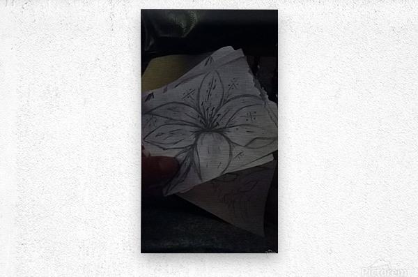 orca image 1522592227997_1522592228091  Metal print