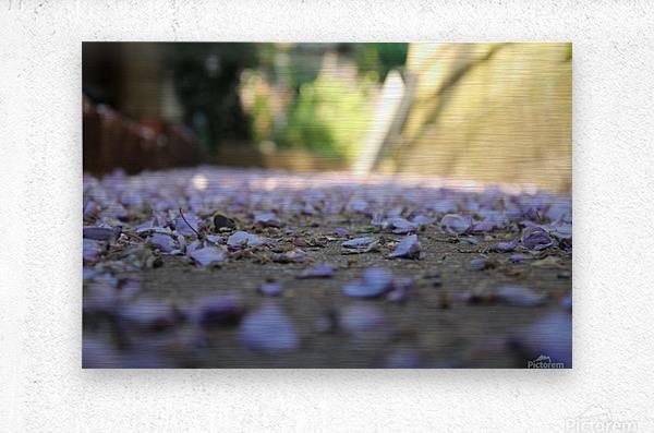 Fall Petals  Metal print