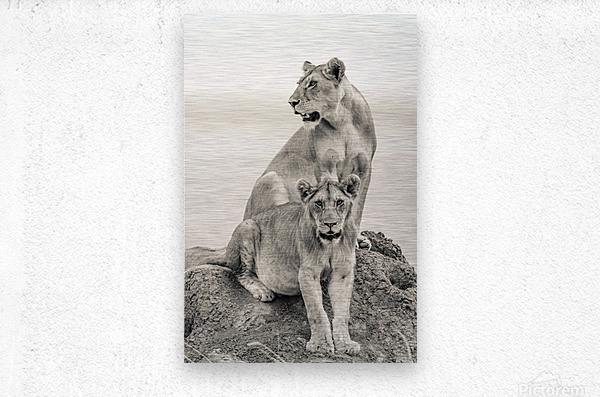 Mothers  Metal print