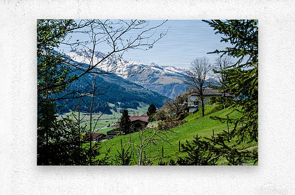 In The Alps  Metal print