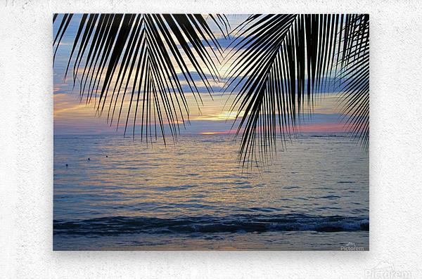 Tropical Sunset 4  Metal print