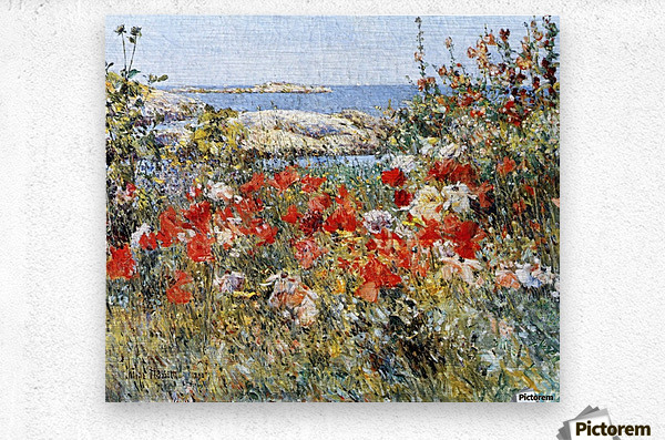 Flower Garden, Isles of Shoals  Metal print