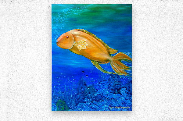 Undersea Journey  Metal print