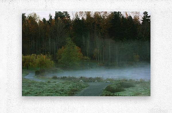 Weyerhaeuser morning  Metal print