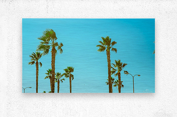 Hollywood Vibes  Metal print