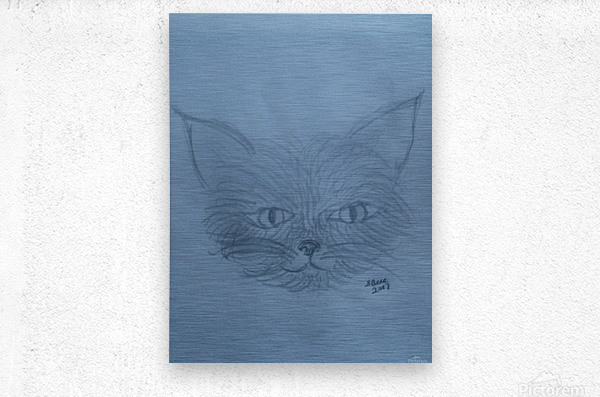 His Name is Mouse  Metal print