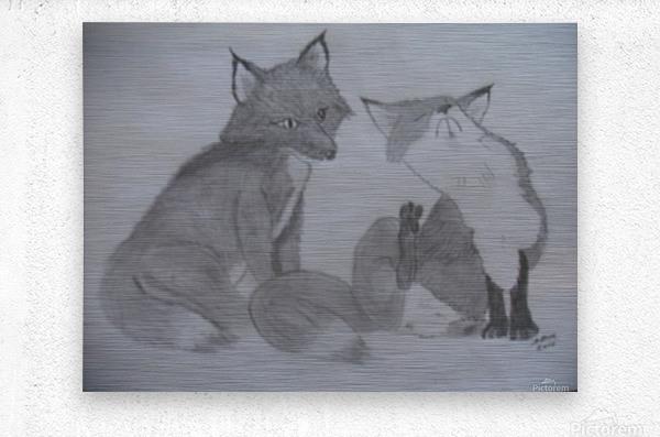 Fox Pair  Metal print