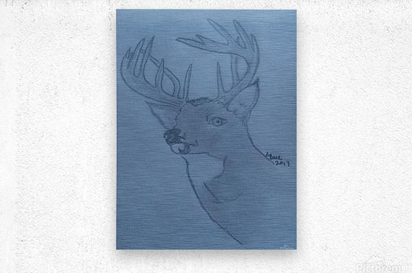 Maine Deer  Metal print