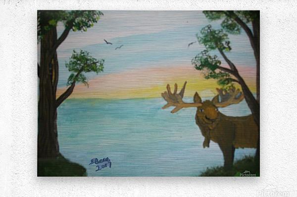Maine Moose  Metal print