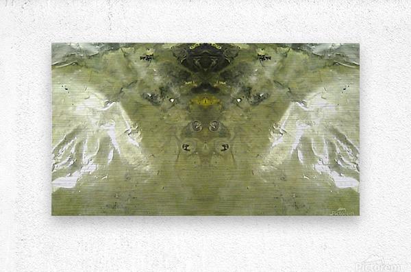 1538650889234_1538661216.28  Metal print
