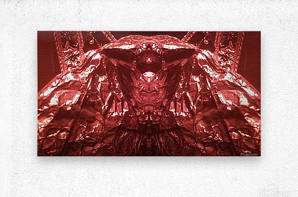 1539415559480_1539490454.24  Metal print