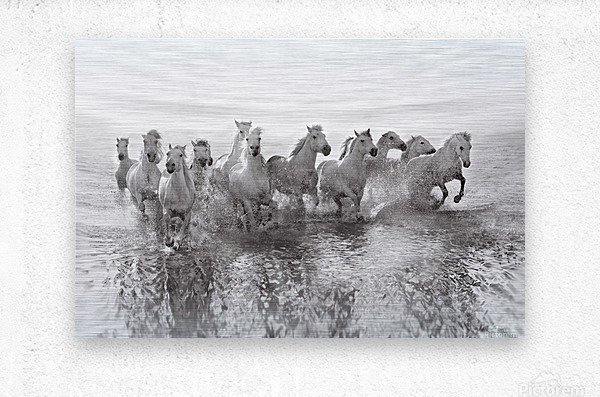 Illusion of power (13 horse power though)  Metal print