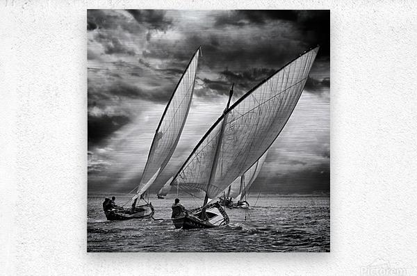 Sailboats and Light  Metal print