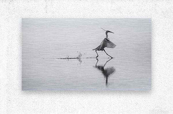 Dancing on the water  Metal print