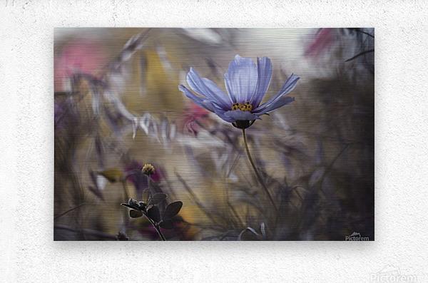 Things that flowers tell  Metal print