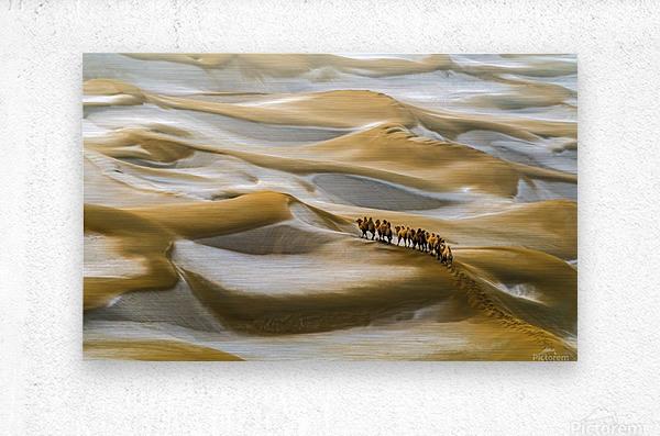 Desert Winter  Metal print