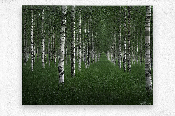 The tunnel  Metal print