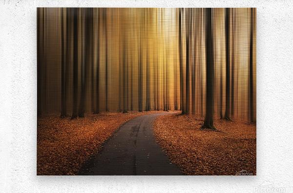 Path to unknown  Metal print