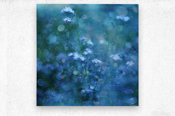 Blue Serenity  Metal print