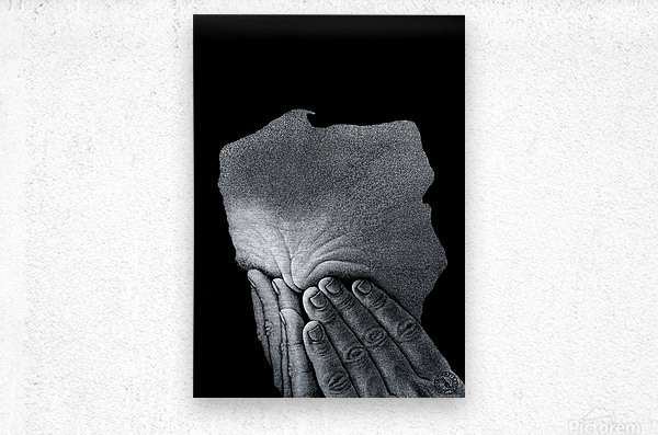 19 Krzysztof Grzondziel  Metal print