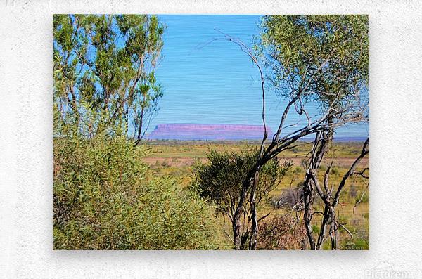 Outback6  Metal print