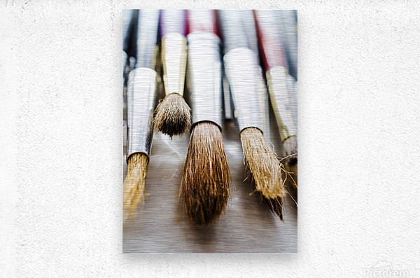 The Artists Brushes  Metal print