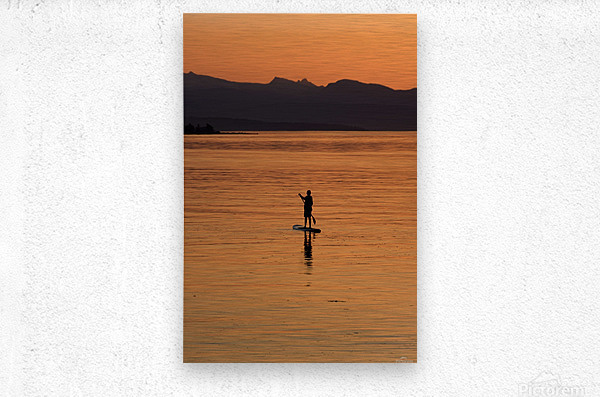 The paddleboarder  Metal print