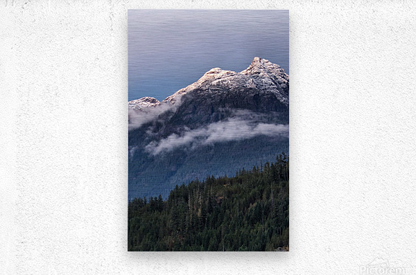 September chill  Metal print