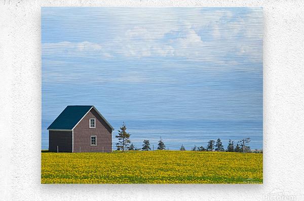 Prince Edward Island landscape  Impression metal