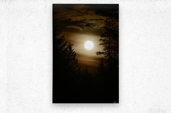 Moody moon  Metal print