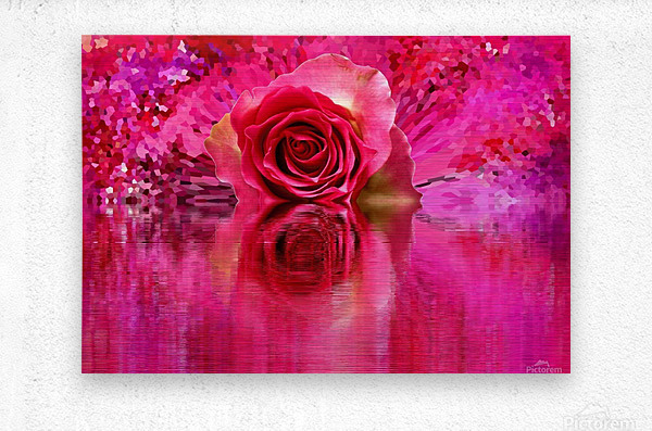 Beautiful colourful flower blossom flower background design floral home decor decoration   Metal print
