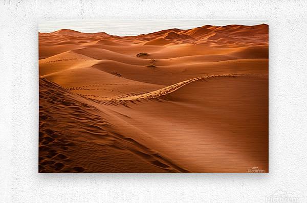 desert, morocco, sand dune, dry, landscape, dunes, sahara, gobi desert,  Metal print