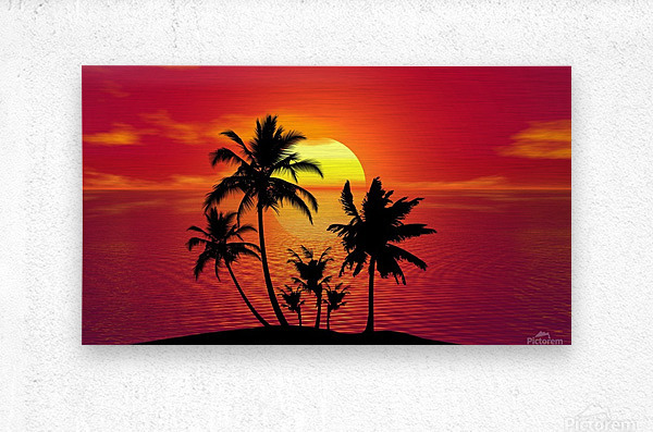 tropical 1651423  Metal print